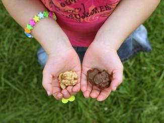 Kookanje - Walnoten-in-een-chocoladejasje