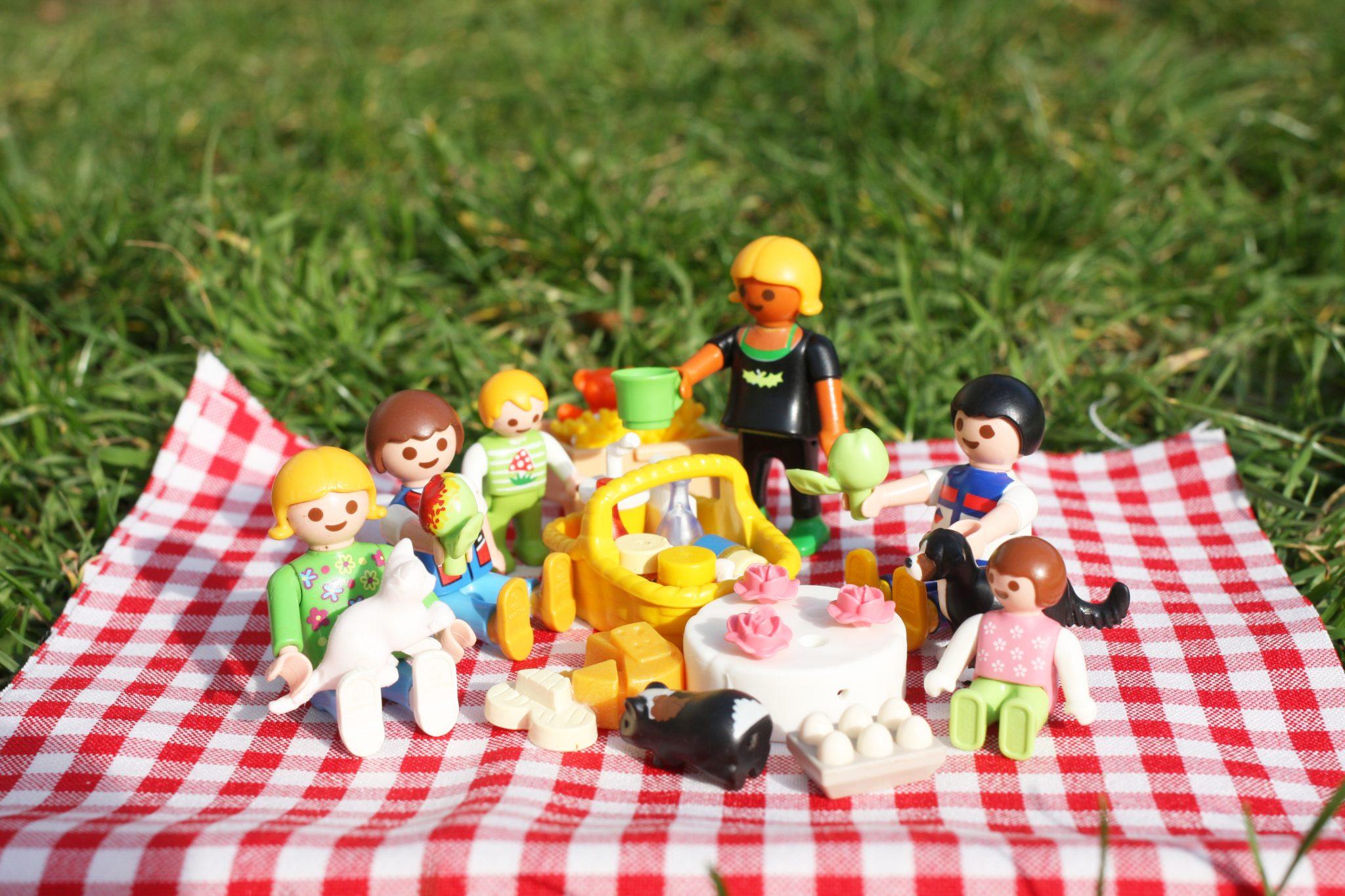 Picknickidee